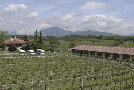 Holiday farm Tre Colline Bardolino